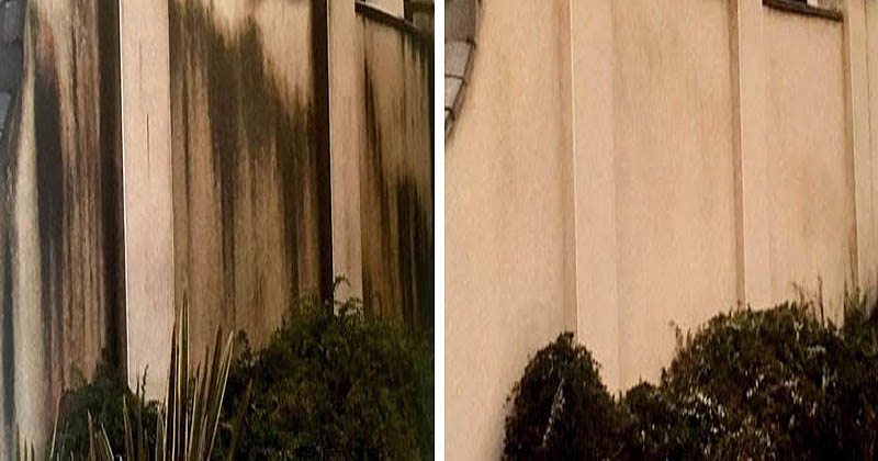 Wall cleaning service